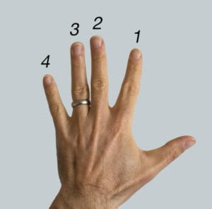 The number system of the left hand for guitar players